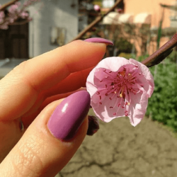 Spring 2019 Nail Trends and Manicure Ideas